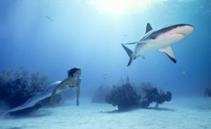 Linden Wolbert '03 created the Youtube channel Mermaid Minute to educate viewers on the ocean. Photo courtesy of Linden Wolbert.