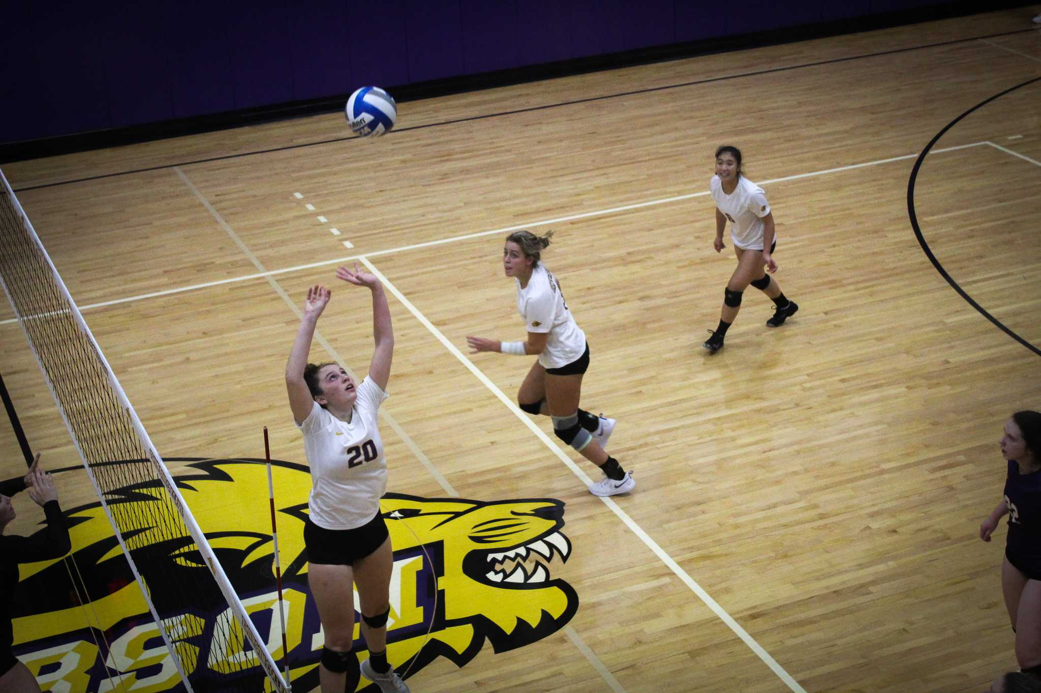Caroline Bond (left, No. 20) sets the ball for an Emerson outside hitter. Photo by Rachel Culver / Beacon Staff