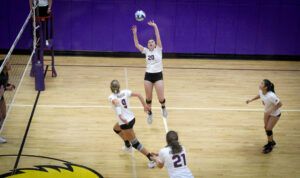 Volleyball players claim NEWMAC honors