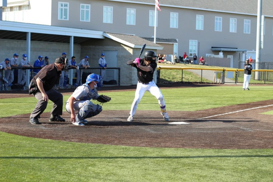 Junior Quinton Copeland at bat for the Lions.